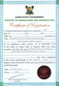 Achievers (Okota) Cooperative Agriculture