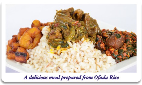 A delicious meal prepared from Ofada Rice